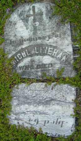 LINEHAN, MICHAEL - Berkshire County, Massachusetts | MICHAEL LINEHAN - Massachusetts Gravestone Photos