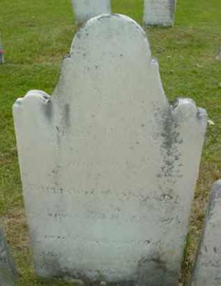 LINN, MARY H - Berkshire County, Massachusetts | MARY H LINN - Massachusetts Gravestone Photos