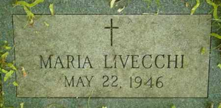 LIVECCHI, MARIA - Berkshire County, Massachusetts | MARIA LIVECCHI - Massachusetts Gravestone Photos