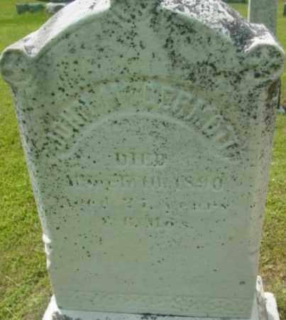 MCDERMOTT, JOHN - Berkshire County, Massachusetts | JOHN MCDERMOTT - Massachusetts Gravestone Photos