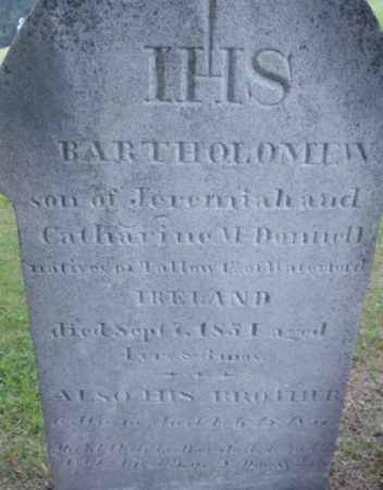 MCDONNELL, BARTHOLOMEW - Berkshire County, Massachusetts   BARTHOLOMEW MCDONNELL - Massachusetts Gravestone Photos