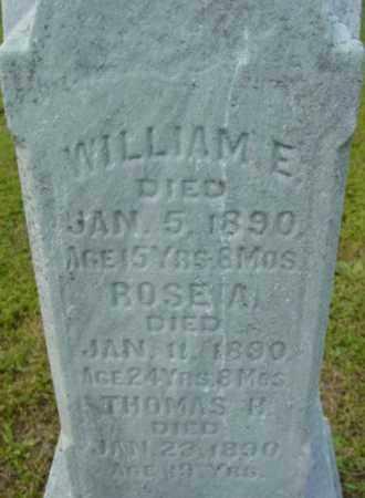 MCNAMEE, WILLIAM E - Berkshire County, Massachusetts   WILLIAM E MCNAMEE - Massachusetts Gravestone Photos