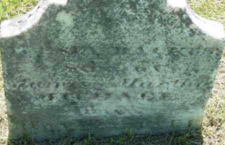 MICHAEL, WESLY BACKUS - Berkshire County, Massachusetts | WESLY BACKUS MICHAEL - Massachusetts Gravestone Photos