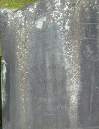 MILLER, LEVI C - Berkshire County, Massachusetts | LEVI C MILLER - Massachusetts Gravestone Photos