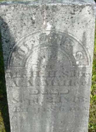 MILLER, LOEZER S - Berkshire County, Massachusetts   LOEZER S MILLER - Massachusetts Gravestone Photos
