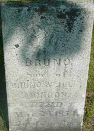 MONGON, BRUNO - Berkshire County, Massachusetts | BRUNO MONGON - Massachusetts Gravestone Photos