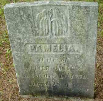 MOOERS, PAMELIA - Berkshire County, Massachusetts | PAMELIA MOOERS - Massachusetts Gravestone Photos