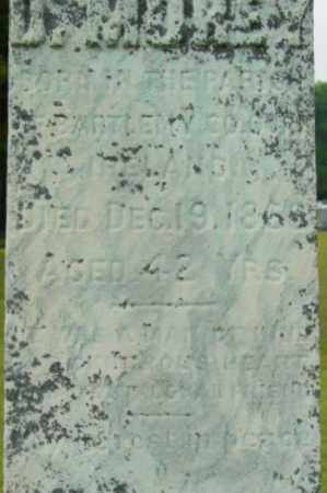 MOREY, D - Berkshire County, Massachusetts | D MOREY - Massachusetts Gravestone Photos