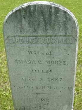 MORSE, CAROLINE F - Berkshire County, Massachusetts   CAROLINE F MORSE - Massachusetts Gravestone Photos