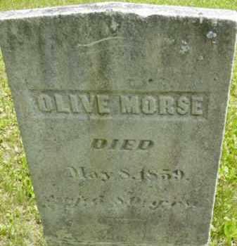 MORSE, OLIVE - Berkshire County, Massachusetts | OLIVE MORSE - Massachusetts Gravestone Photos