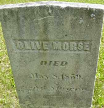 MORSE, OLIVE - Berkshire County, Massachusetts | OLIVE MORSE - Massachusetts Gravestone Photos