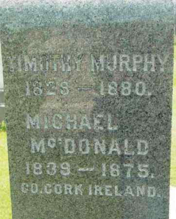 MURPHY, TIMOTHY - Berkshire County, Massachusetts | TIMOTHY MURPHY - Massachusetts Gravestone Photos