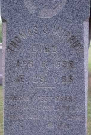 MURPHY, THOMAS J - Berkshire County, Massachusetts | THOMAS J MURPHY - Massachusetts Gravestone Photos