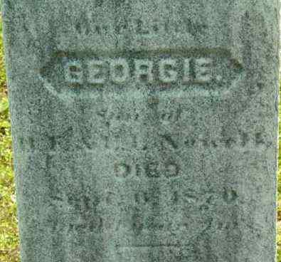 NEWELL, GEORGIE - Berkshire County, Massachusetts | GEORGIE NEWELL - Massachusetts Gravestone Photos