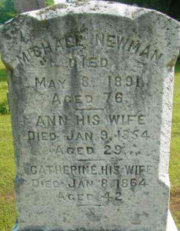 NEWMAN, ANN - Berkshire County, Massachusetts | ANN NEWMAN - Massachusetts Gravestone Photos