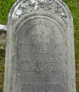 NEWTON, ABIGAIL - Berkshire County, Massachusetts | ABIGAIL NEWTON - Massachusetts Gravestone Photos