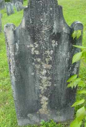 NORTHRUP, LEWIS - Berkshire County, Massachusetts | LEWIS NORTHRUP - Massachusetts Gravestone Photos