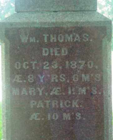 NORTON, WILLIAM THOMAS - Berkshire County, Massachusetts | WILLIAM THOMAS NORTON - Massachusetts Gravestone Photos