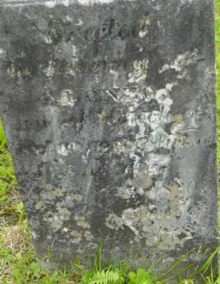 NURSE, ALONZO - Berkshire County, Massachusetts | ALONZO NURSE - Massachusetts Gravestone Photos