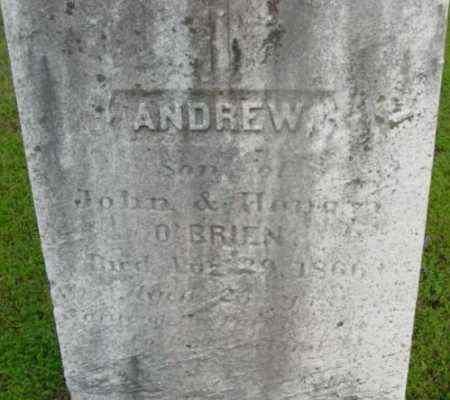 O'BRIEN, ANDREW - Berkshire County, Massachusetts | ANDREW O'BRIEN - Massachusetts Gravestone Photos