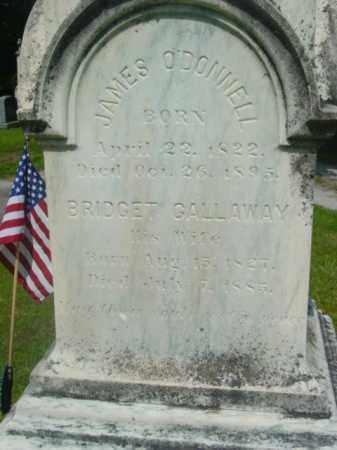 GALLOWAY O'DONNELL, BRIDGET - Berkshire County, Massachusetts | BRIDGET GALLOWAY O'DONNELL - Massachusetts Gravestone Photos