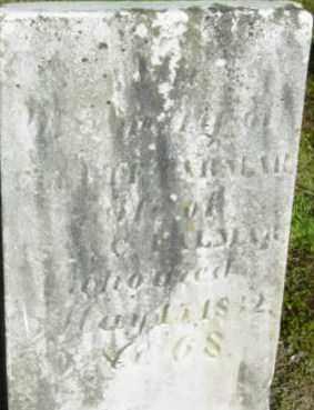 PALMAR, ELECTE - Berkshire County, Massachusetts   ELECTE PALMAR - Massachusetts Gravestone Photos