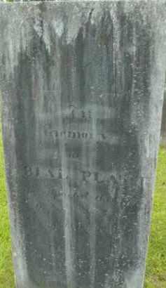 PLATT, ABIAL - Berkshire County, Massachusetts | ABIAL PLATT - Massachusetts Gravestone Photos