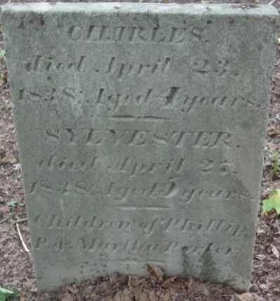 PORTER, CHARLES - Berkshire County, Massachusetts | CHARLES PORTER - Massachusetts Gravestone Photos