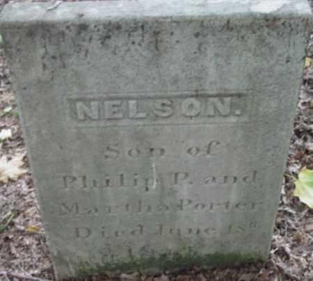 PORTER, NELSON - Berkshire County, Massachusetts | NELSON PORTER - Massachusetts Gravestone Photos