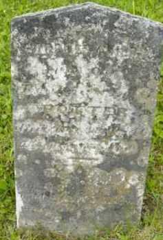 POTTER, GARDNER CHILDS - Berkshire County, Massachusetts | GARDNER CHILDS POTTER - Massachusetts Gravestone Photos