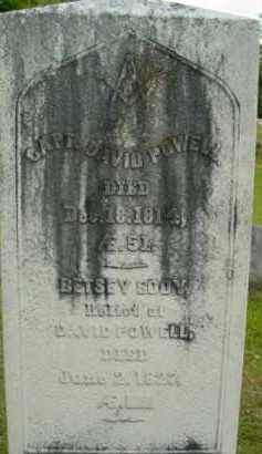 POWELL, DAVID - Berkshire County, Massachusetts   DAVID POWELL - Massachusetts Gravestone Photos