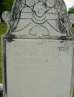 POWELL, MILES - Berkshire County, Massachusetts | MILES POWELL - Massachusetts Gravestone Photos