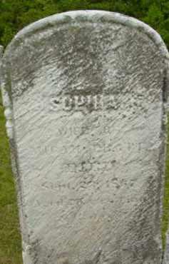 PRATT, SOPHIA - Berkshire County, Massachusetts | SOPHIA PRATT - Massachusetts Gravestone Photos