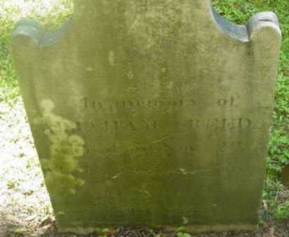 REED, ABRAHAM - Berkshire County, Massachusetts   ABRAHAM REED - Massachusetts Gravestone Photos