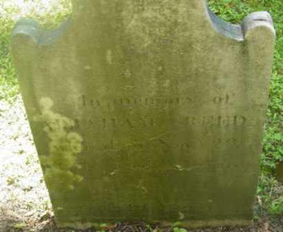 REED, ABRAHAM - Berkshire County, Massachusetts | ABRAHAM REED - Massachusetts Gravestone Photos