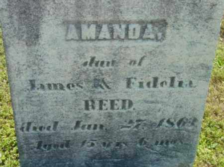 REED, AMANDA - Berkshire County, Massachusetts | AMANDA REED - Massachusetts Gravestone Photos