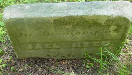 REED, JAEL - Berkshire County, Massachusetts | JAEL REED - Massachusetts Gravestone Photos