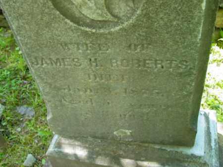 ROBERTS, LOVINA C - Berkshire County, Massachusetts | LOVINA C ROBERTS - Massachusetts Gravestone Photos