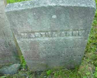 ROBERTS, MARTHA ANN - Berkshire County, Massachusetts | MARTHA ANN ROBERTS - Massachusetts Gravestone Photos