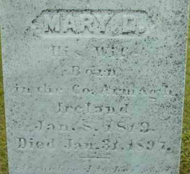 RODGERS, MARY D - Berkshire County, Massachusetts | MARY D RODGERS - Massachusetts Gravestone Photos