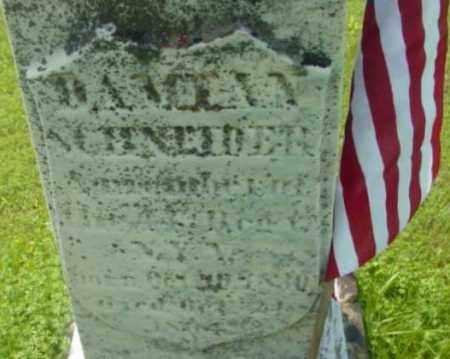 SCHNEIDER, DAMIAN - Berkshire County, Massachusetts | DAMIAN SCHNEIDER - Massachusetts Gravestone Photos