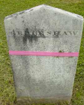 SHAW, GRACE - Berkshire County, Massachusetts | GRACE SHAW - Massachusetts Gravestone Photos