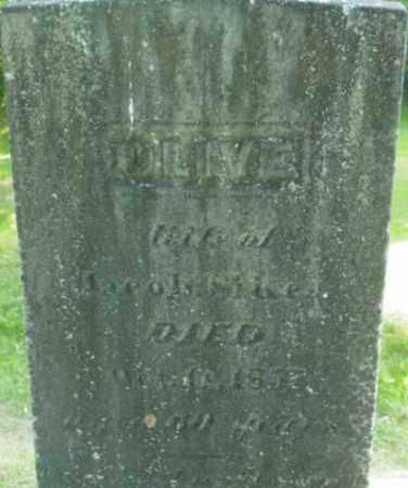 SIKES, OLIVE - Berkshire County, Massachusetts | OLIVE SIKES - Massachusetts Gravestone Photos