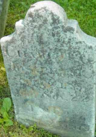 STEVENS, CHARLOTTE JOSEPHINE - Berkshire County, Massachusetts   CHARLOTTE JOSEPHINE STEVENS - Massachusetts Gravestone Photos