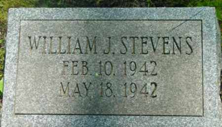 STEVENS, WILLIAM J - Berkshire County, Massachusetts   WILLIAM J STEVENS - Massachusetts Gravestone Photos