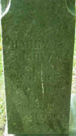 STONE, HARVEY - Berkshire County, Massachusetts | HARVEY STONE - Massachusetts Gravestone Photos