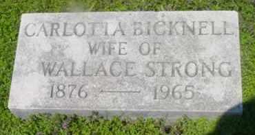 BICKNELL, CARLOTTA - Berkshire County, Massachusetts | CARLOTTA BICKNELL - Massachusetts Gravestone Photos