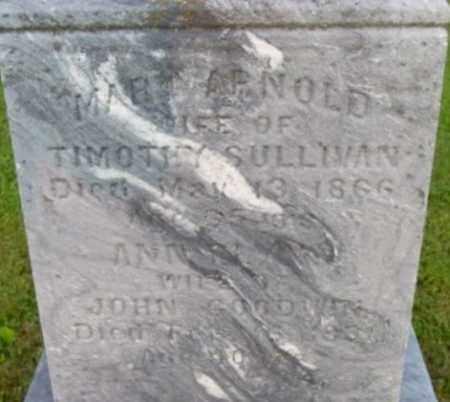 ARNOLD, MARY - Berkshire County, Massachusetts | MARY ARNOLD - Massachusetts Gravestone Photos