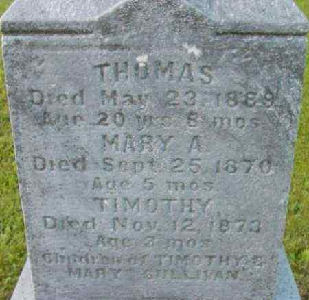 SULLIVAN, MARY A - Berkshire County, Massachusetts | MARY A SULLIVAN - Massachusetts Gravestone Photos
