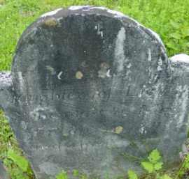 TALCOTT, PAMELA - Berkshire County, Massachusetts | PAMELA TALCOTT - Massachusetts Gravestone Photos